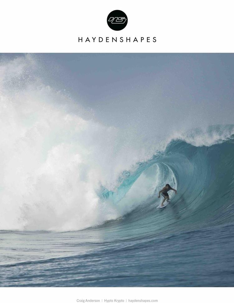 Haydenshapes (Article Ad)