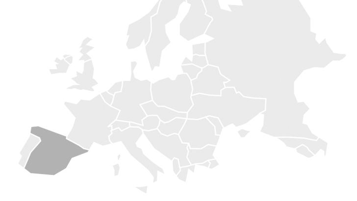 Spanish Market Intel
