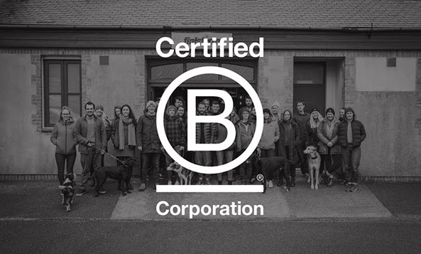 Finisterre Become The First European Surf Brand To Be B-Corp ...