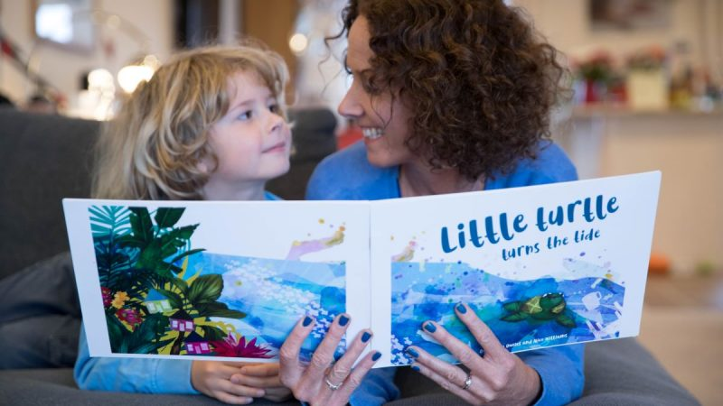 Little Turtle Turns The Tide book