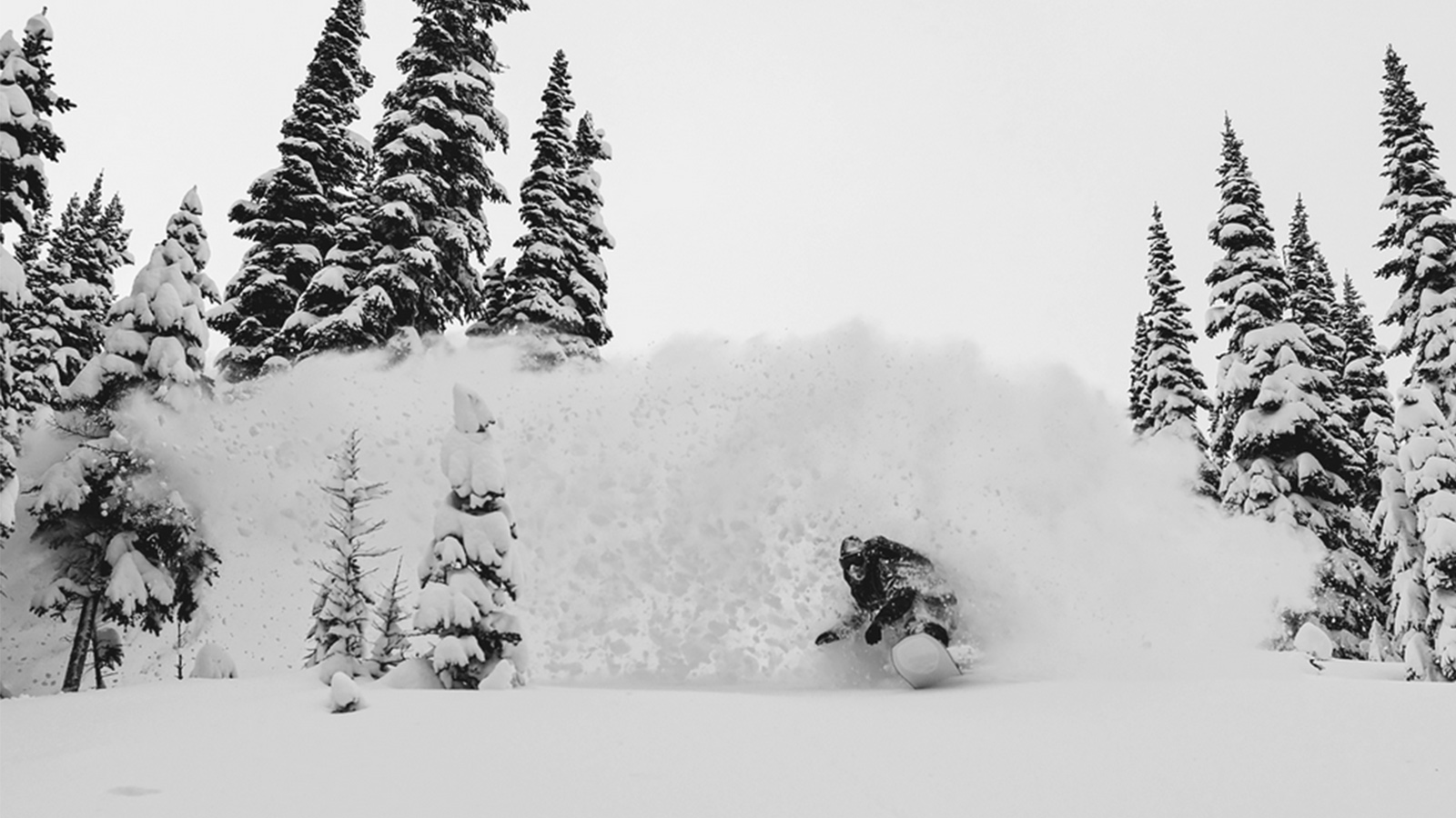 YES. FW20/21 Snowboard Preview