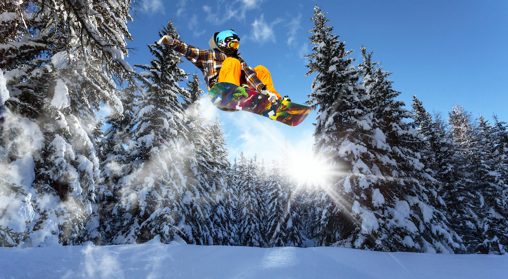 snowboarders in the pine trees