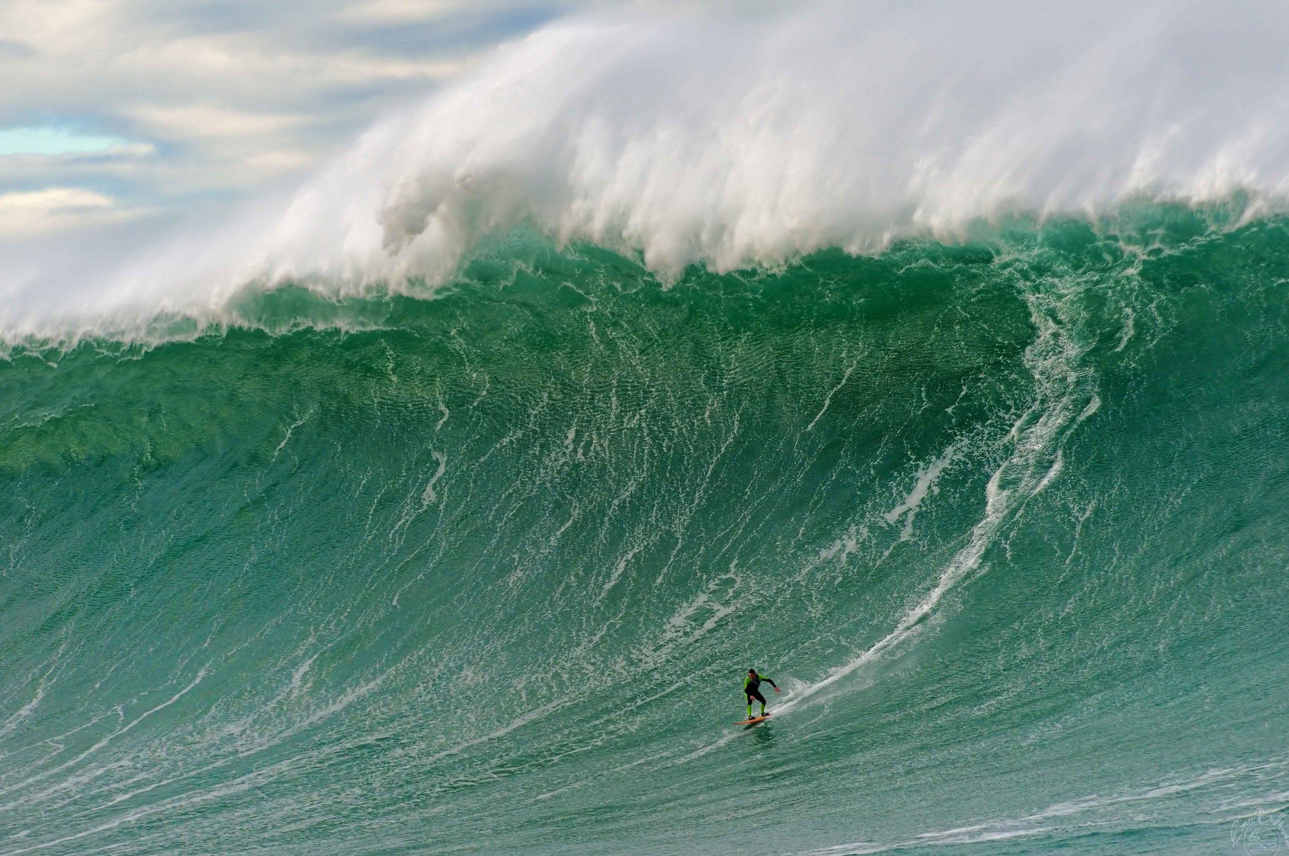 Vertigo Inhibits Me From Surfing, So I Photograph It: Gold
