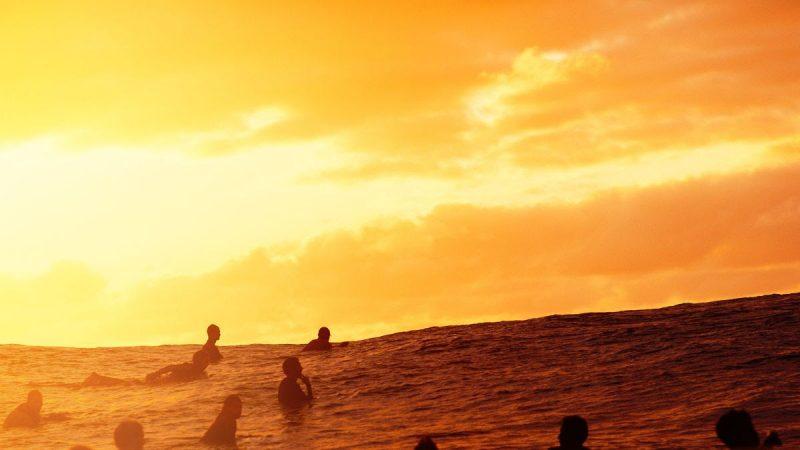 World Surf League WSL IKEA Collaboration Product Line Survey Surfers