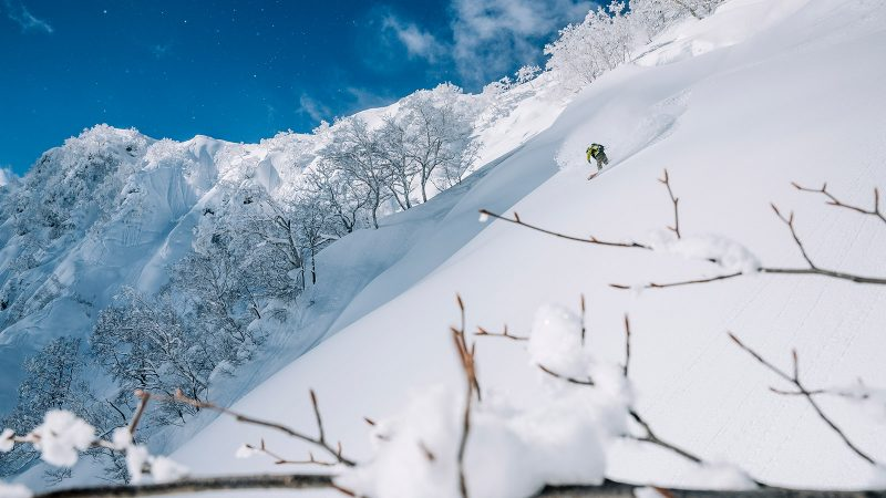 Rossignol FW20/21 Snowboard Bindings