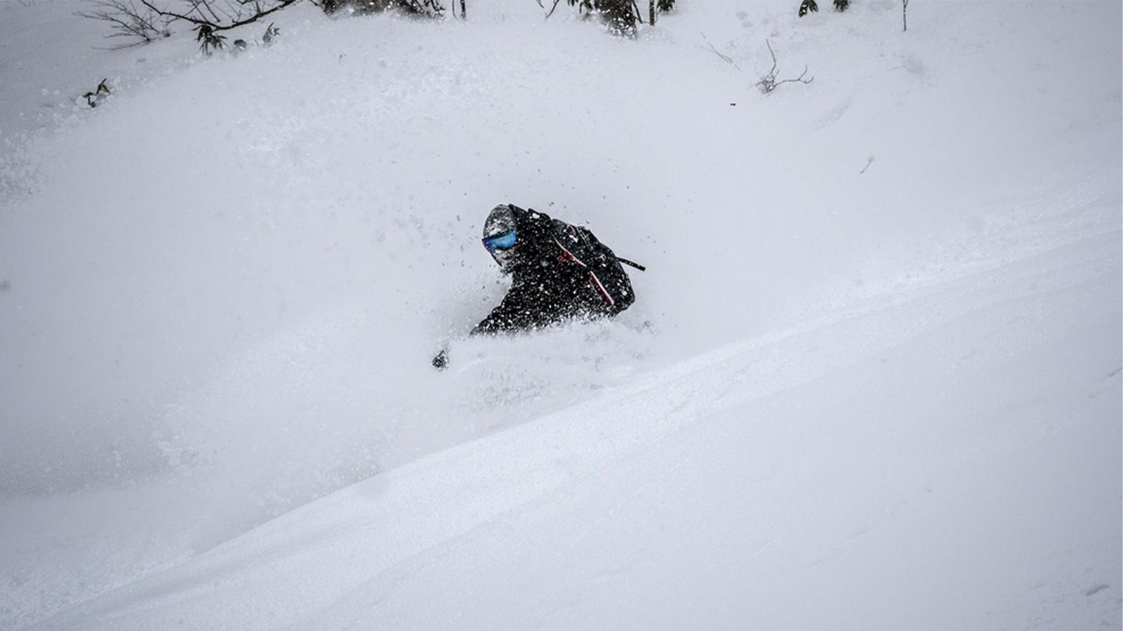 Telos FW20/21 Snowboard Preview