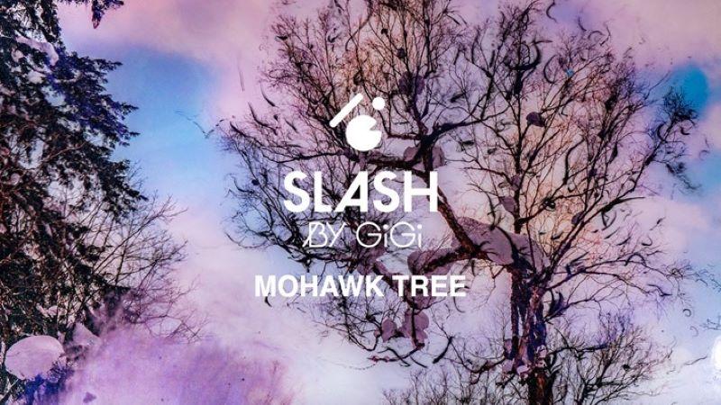 Sully x Slash