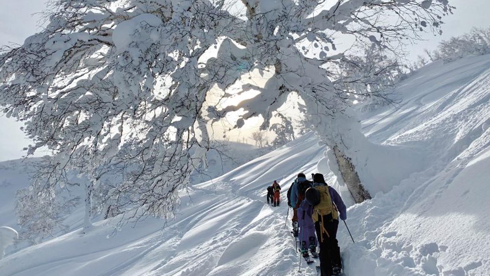 Evoc 21/22 Snow Safety Preview