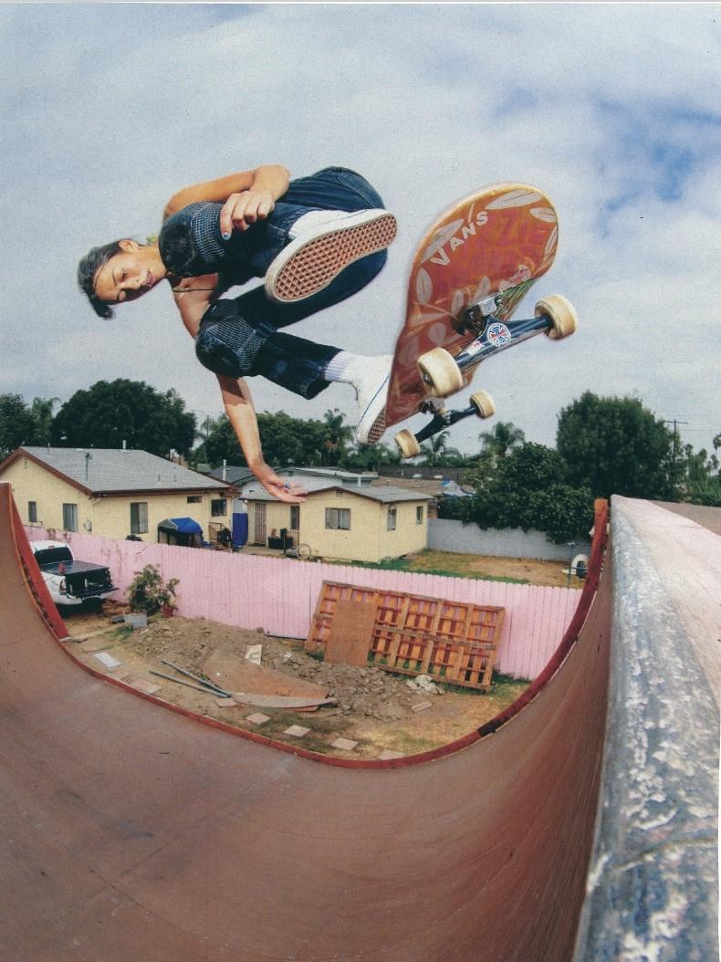 vans classic skate